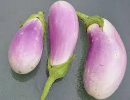 lavendertouch